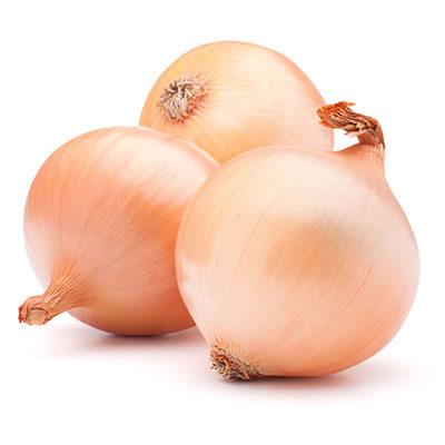Cebolla gorda