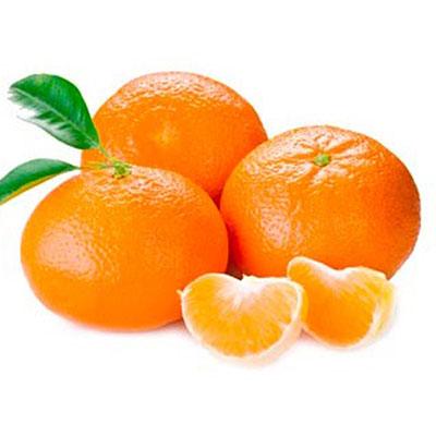 Mandarina rama