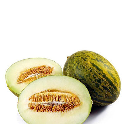 Melon Villaconejos