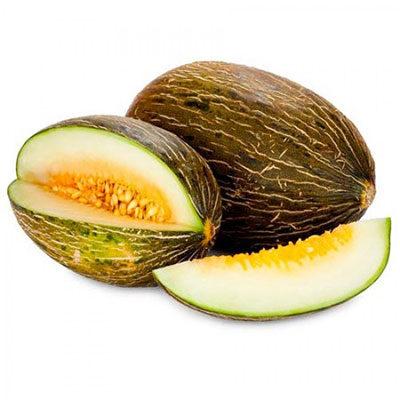 Melon sapo