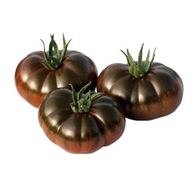 Tomate raff iberico